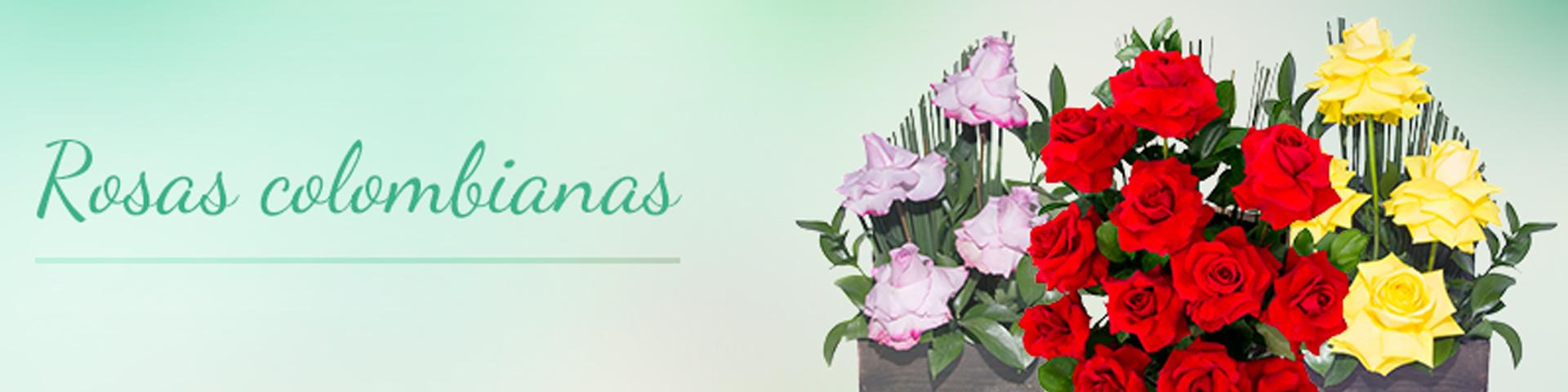 Rosas Colombinas