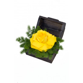 Arranjo de Flores New yellow