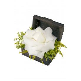 Arranjo de Flores Tesouro branco
