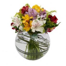 Buquê de Flores Fagulha Colorido Alegre