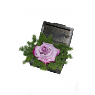 Arranjo de Flores New purple
