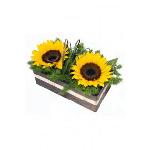 Arranjo de Flores Double sun gold