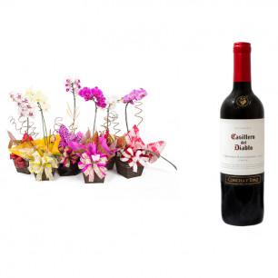 Vaso Plantado Orquídea Variada + Vinho Casillero Del Diablo Reserva Cabernet Sauvignon
